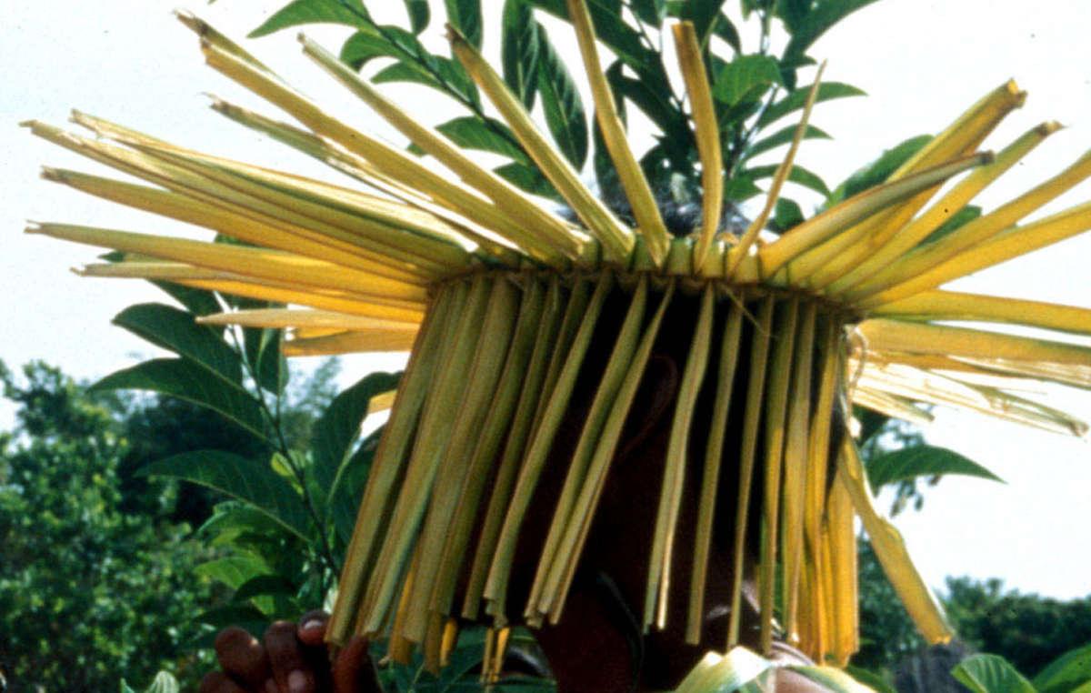 Ein Makuxi trägt ein paishara-Kostüm für ein Treffen in Bismark, Raposa Serra do Sol, Brasilien, Oktober 1996.