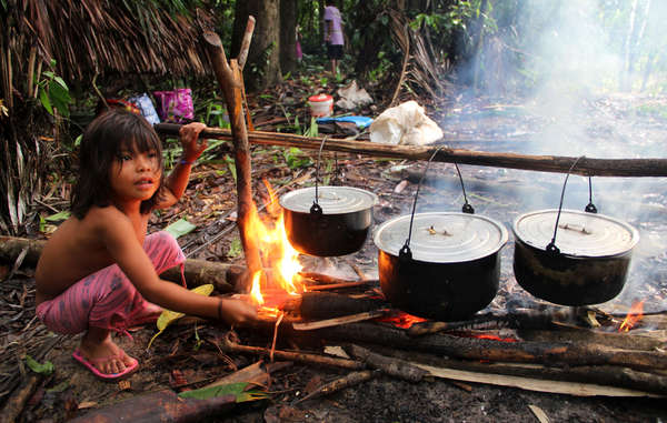 The Matsés live from produce which they hunt and gather in the rainforest.