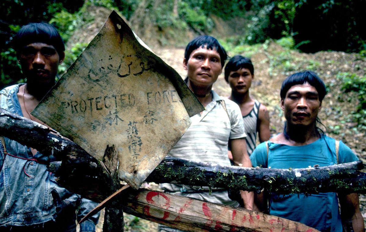 Hombres penan en un bloqueo en la selva.
