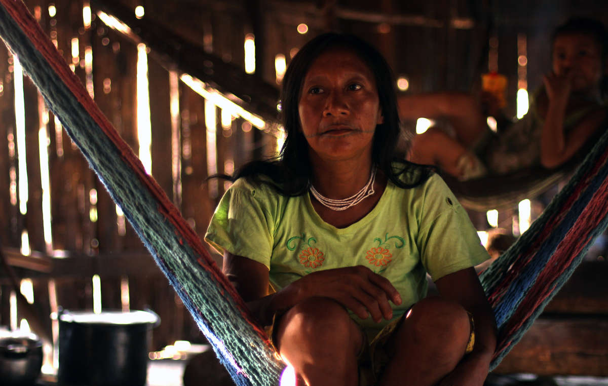 Oil exploration will also affect contacted Matsés who live nearby