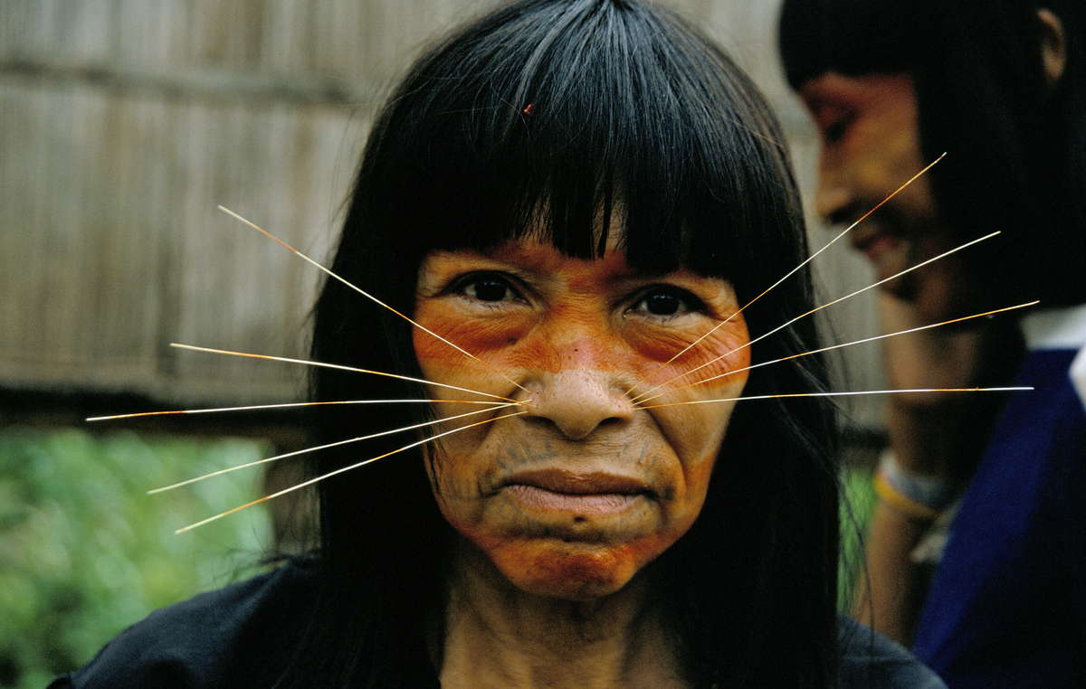 Many of the local Matsés Indians believe the uncontacted Indians are related to their tribe. They strongly reject Pacific Rubiales work in the proposed reserve.