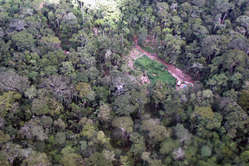 One of the logging camps in the Murunahua Reserve, south-east Peru.