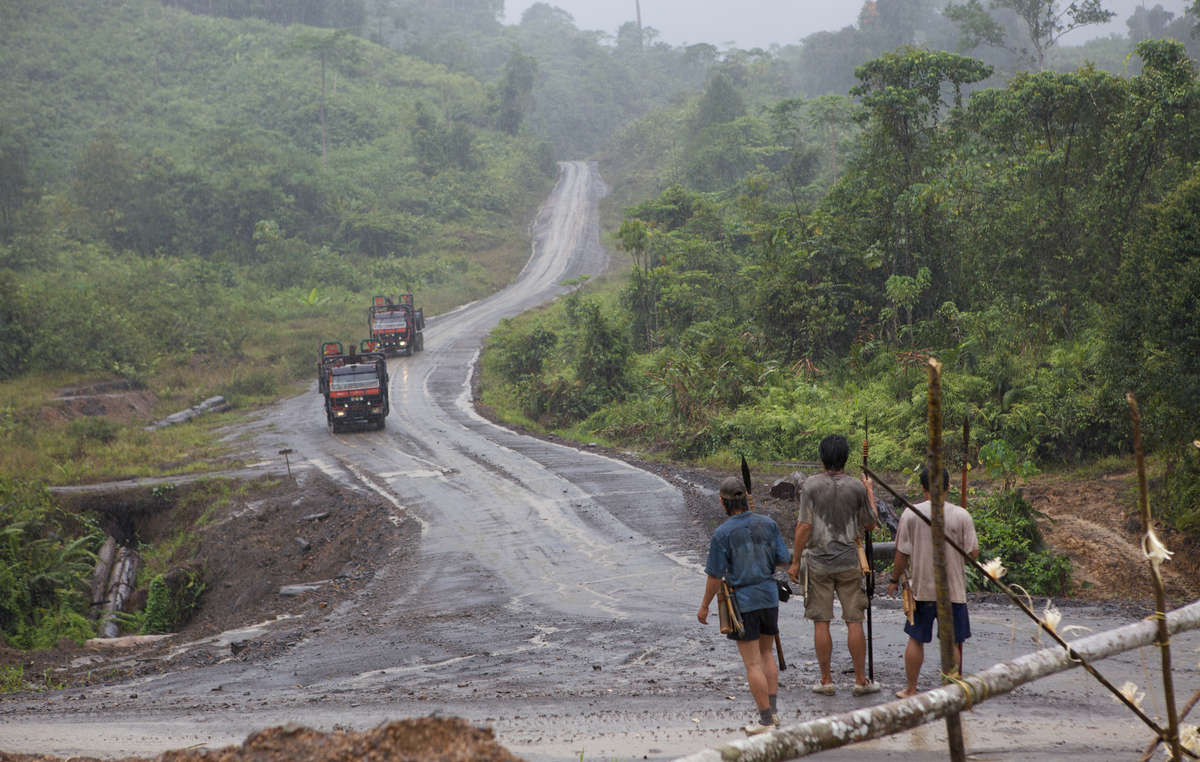 Penan armed with blowpipes block road as Shin Yang logging trucks approach, during a previous blockade.