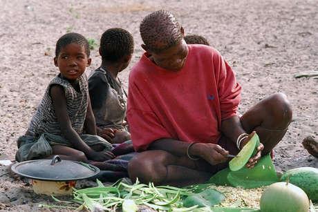 Botswana-bushmen-fl-01_460_landscape