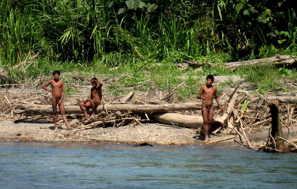 Quelque 200 Indiens isolés mashco-piro ont fait irruption jeudi dernier dans un village indien.
