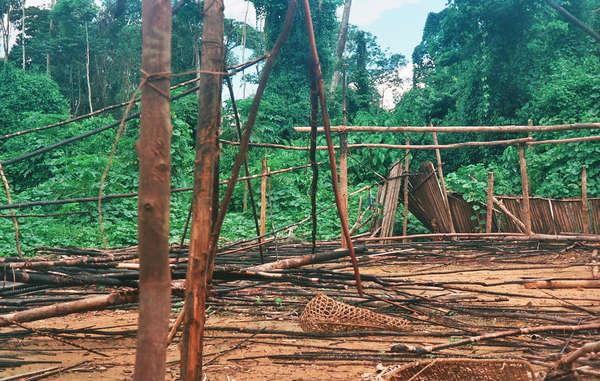 Dopo il brutale attacco agli yanomami, i ceratori d'oro diedero alle fiamme lo sciabono (la casa comunitaria) di Haximu.