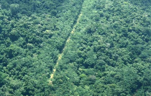 Illegale Landebahn auf dem Land der Yanomami, dem größten bewaldeten indigenen Gebiet in der Welt.