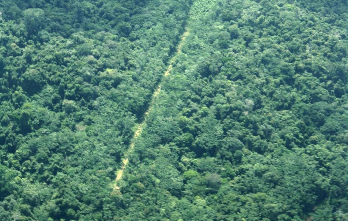 Une piste d'atterrissage illégale en territoire yanomami, la plus vaste région forestière indigène au monde.