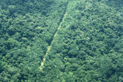 Illegal airstrip on Yanomami land, serving goldminers