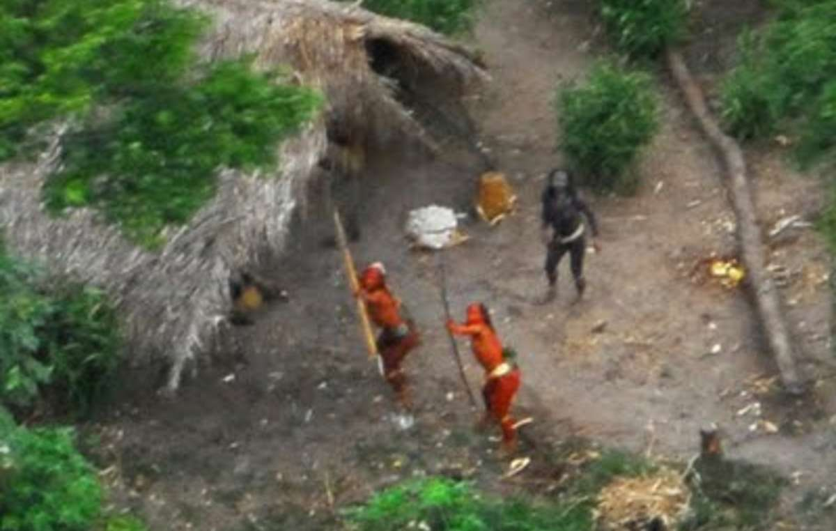 Uncontacted Indians aiming bows and arrows at a plane overhead (photographed in 2008)
