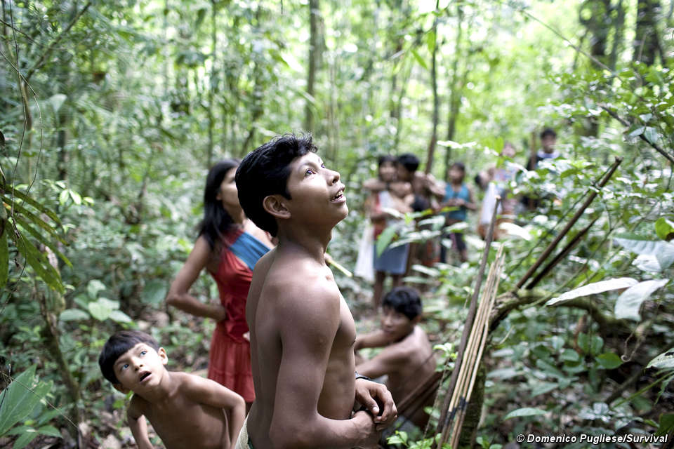 Tribes hunting in forests