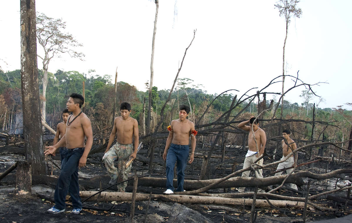 A group of Awá men survey an area of their forest thats been burnt by ranchers. ©Survival