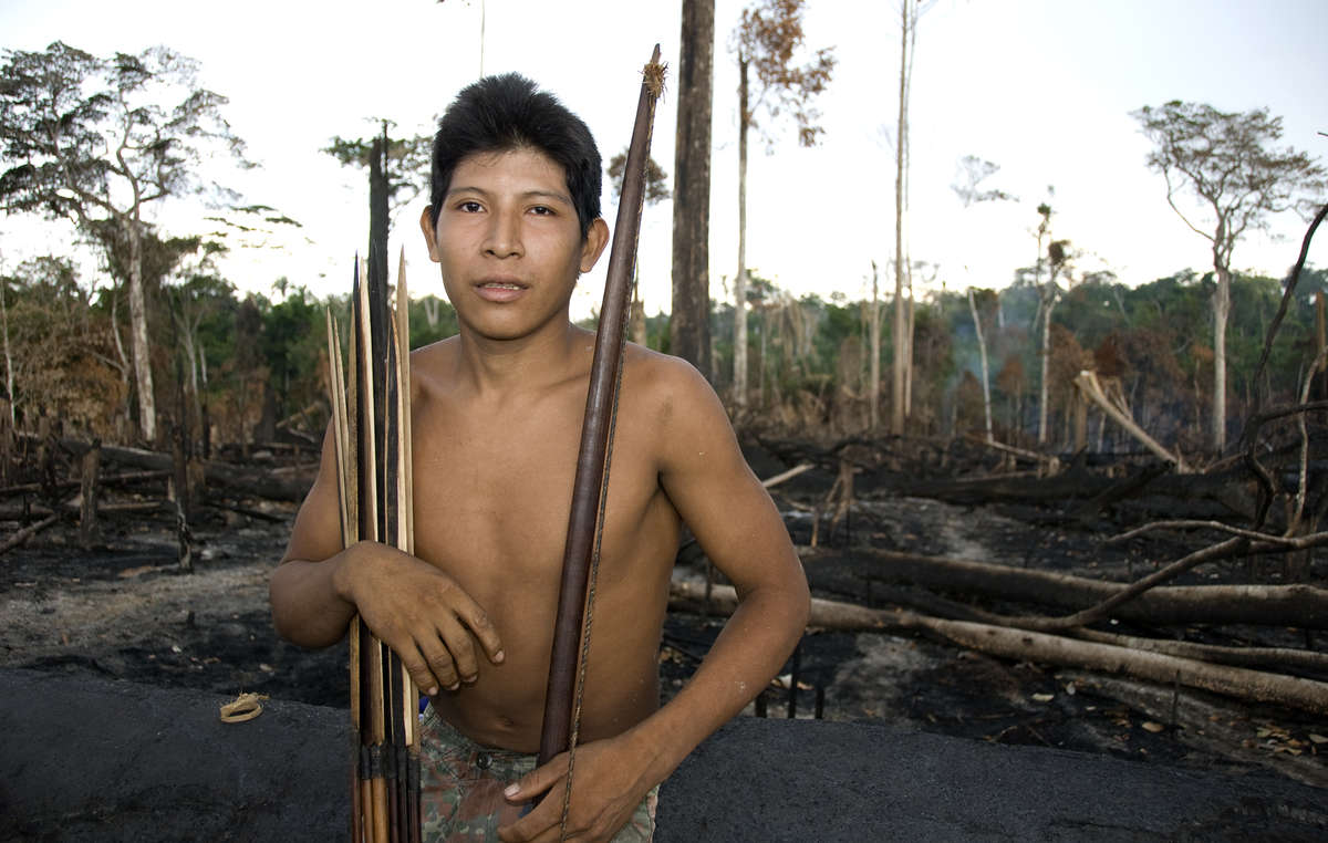 Many indigenous territories in Brazil have been burned by farmers and loggers for years, though 2019s fires are especially bad. Awá man Hemokomaá stands in his peoples forest after it was burned in 2010.