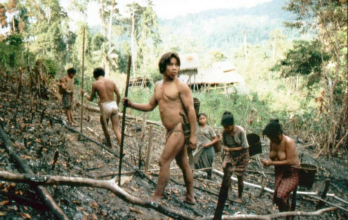 Des Palawan cultivent du riz d'altitude aux Philippines.