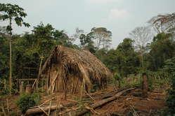 """Casa y jardín del """"hombre del agujero"""" donde cultiva mandioca y otros vegetales."""