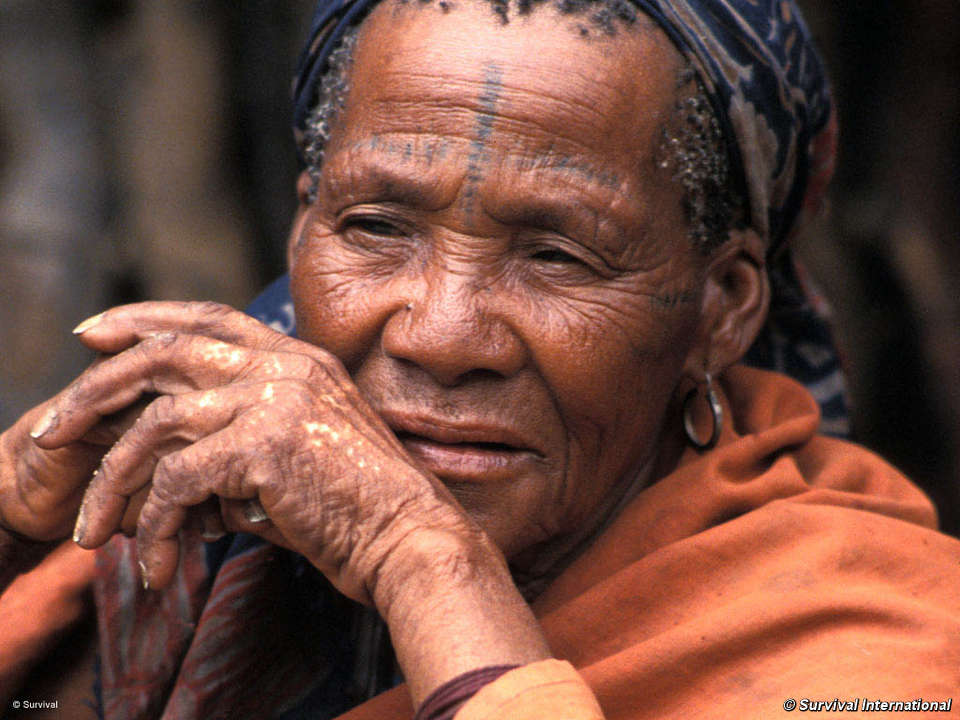 Bushmen - Survival International