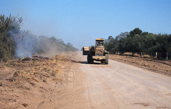 The land is titled to the Ayoreo, but the farmers have erected cattle fences and bulldozed wide tracks.