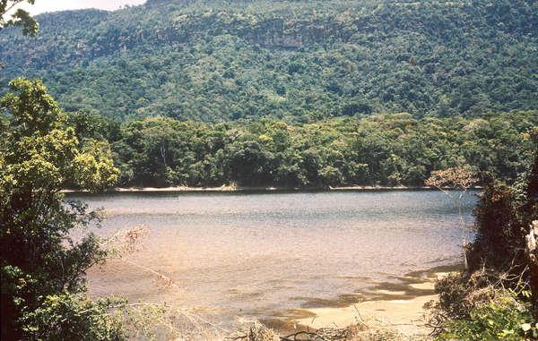 Site du projet de barrage hydroélectrique sur le cours supérieur de la rivière Mazaruni. Toute cette région, en dehors des zones les plus élevées, sera inondée.