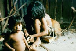 Enfants awá, Brésil. La découverte dIndiens isolés à proximité du territoire des Katukina fait suite à la confirmation de la présence dun groupe dAwá isolés dans lest amazonien.