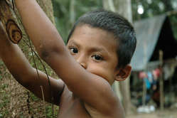 Nukak boy in south-east Colombia