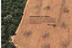 Survival lanza el anuncio Desafiando la lógica, que denuncia la destrucción de la tierra de los ayoreo.