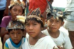 Des enfants makuxi à Uiramutã, Raposa Serra do Sol, Brésil.