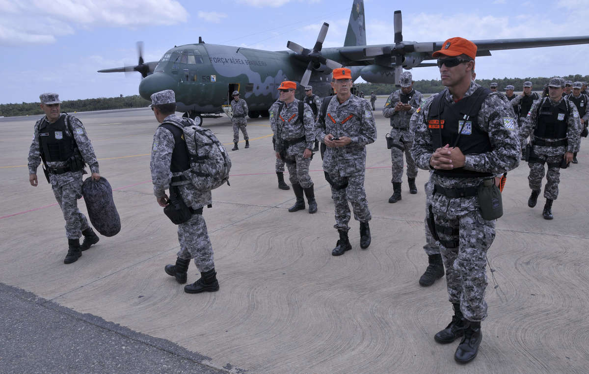 Après des mois de campagne menée par Survival International, le gouvernement brésilien agit enfin pour expulser les envahisseurs illégaux du territoire awá.