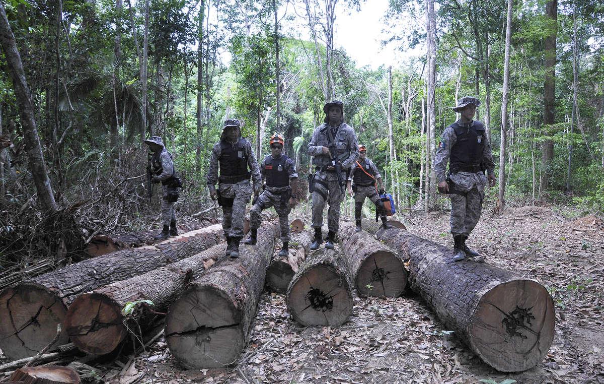 Des soldats dans un camp illégal dexploitation forestière sur le territoire awá. Le gouvernement brésilien a lancé une vaste opération pour expulser les envahisseurs illégaux de la forêt des Awá.