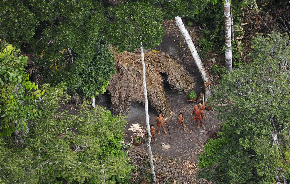 Unkontaktierte Indigene in Brasilien, aufgenommen aus der Luft während einer Expedition der brasilianischen Regierung im Jahr 2010. Die Fotos zeigen eine gesunde Gemeinschaft mit Körben voller Maniok und frischen Papaya aus ihren Gärten.
