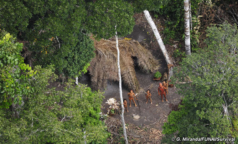 There are over 100 uncontacted tribes in Brazil.