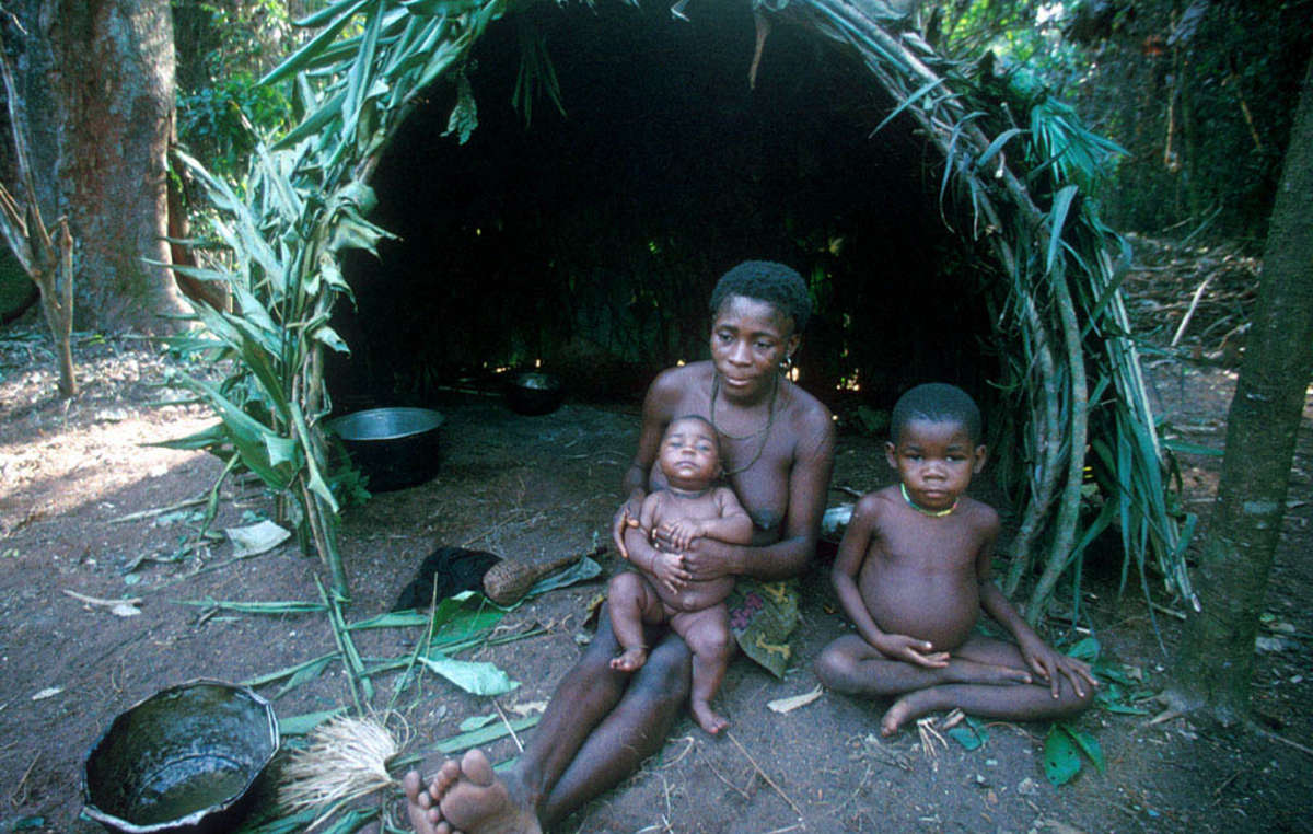 The 'Pygmy' peoples' intimate connection to the forests was once valued and respected by other societies, but is now derided.