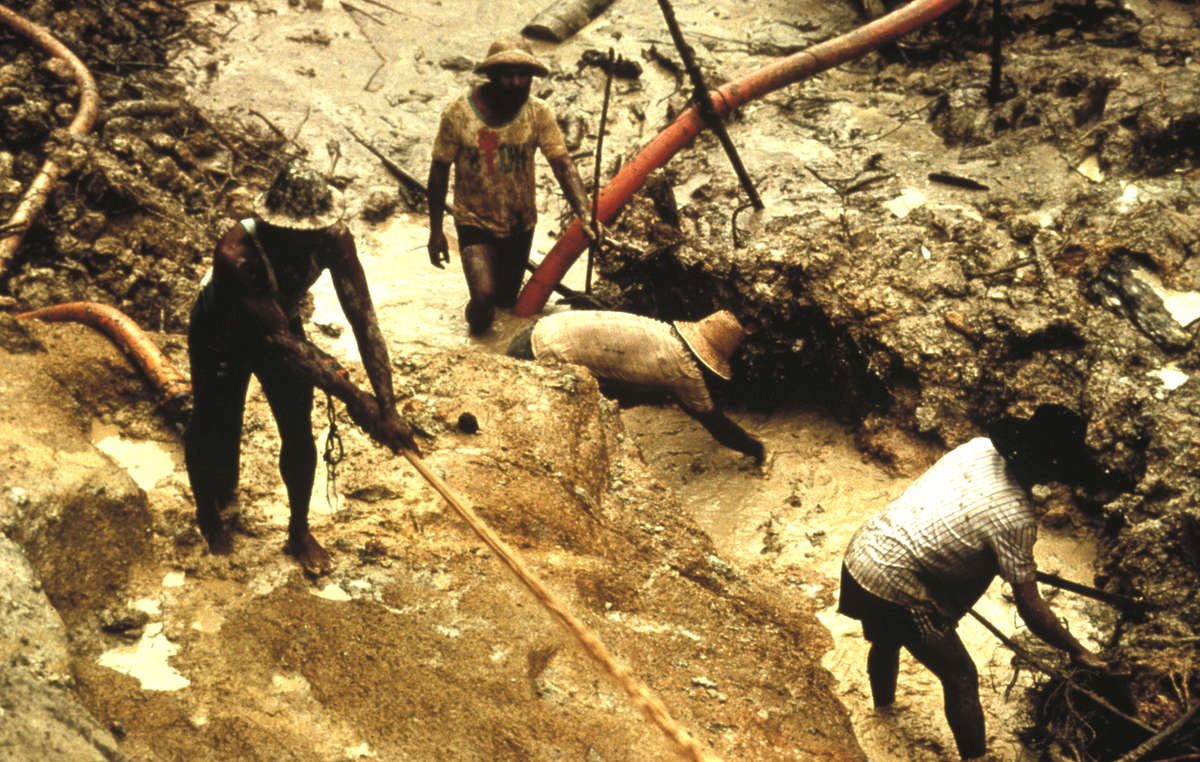 Los garimpeiros o buscadores de oro asolaron a los yanomamis entre los años 80 y 90, y todavía representan una amenaza genocida para los miembros no contactados de la tribu.
