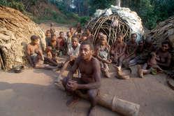 Muchos pigmeos en África central han sufrido enormemente tras haber sido expulsados de sus selvas.