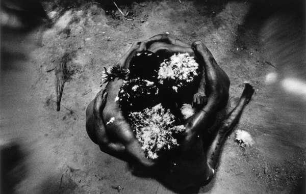 Gli sciamani yanomami riescono a controllare gli spiriti inalando la polvere alluginogena yakoana. Entrano così in uno stato di trance durante cui incontrano gli spiriti, o xapiripë.