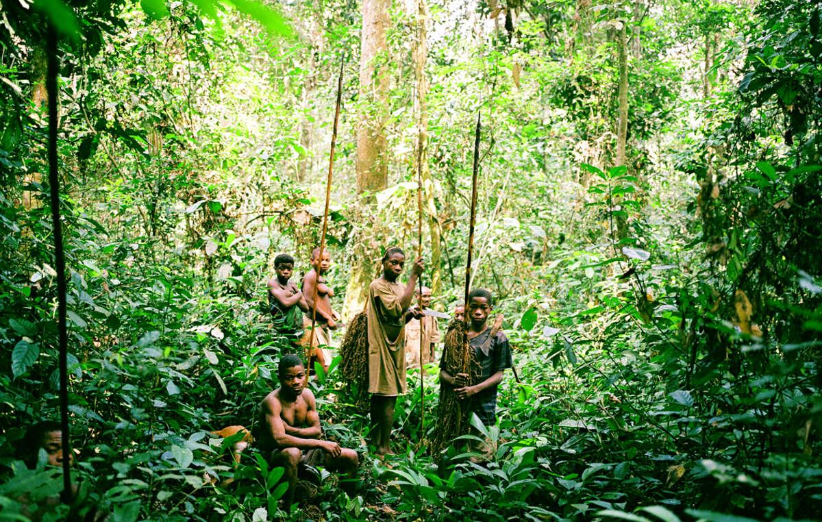 Os povos indígenas são os especialistas da floresta. Aqui, são fotografados na República Democrática do Congo.