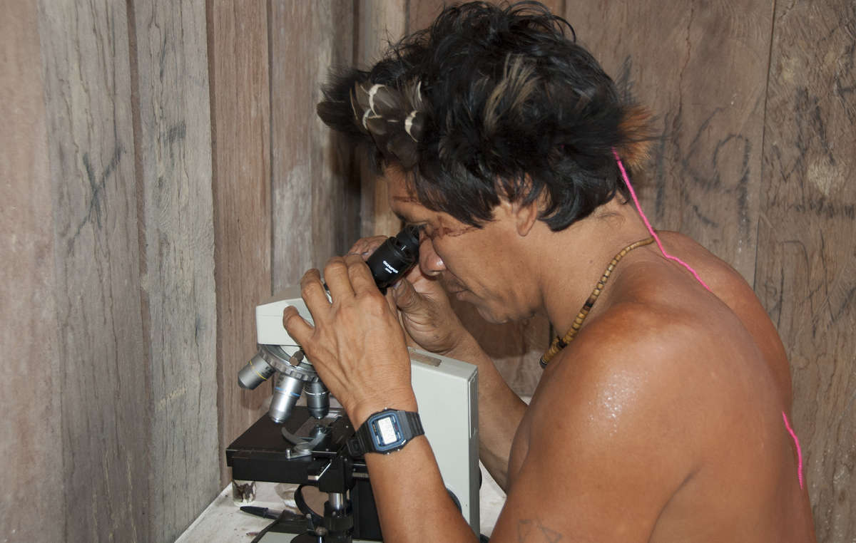 Yanomami man studying slides of blood for malaria, 2008. The invasion of miners and colonists on Yanomami land has brought an influx of disease.