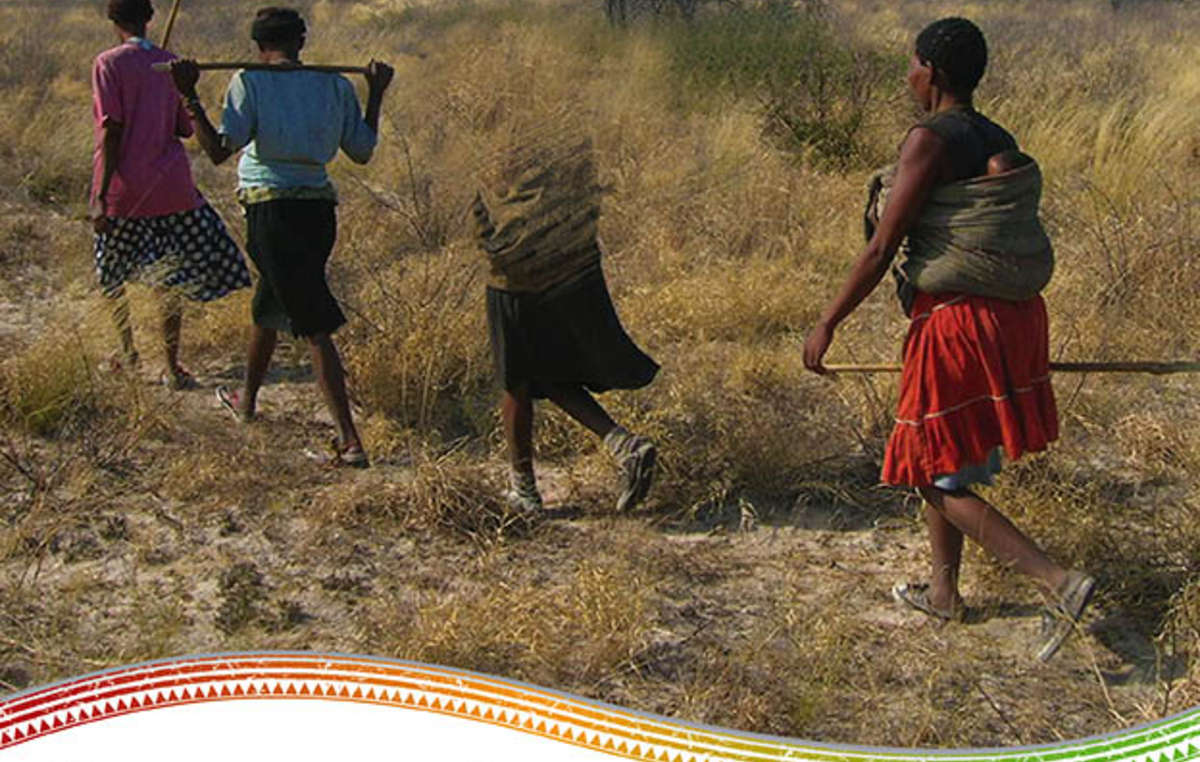 Une nouvelle annonce publicitaire de Survival appelle au boycott du tourisme au Botswana