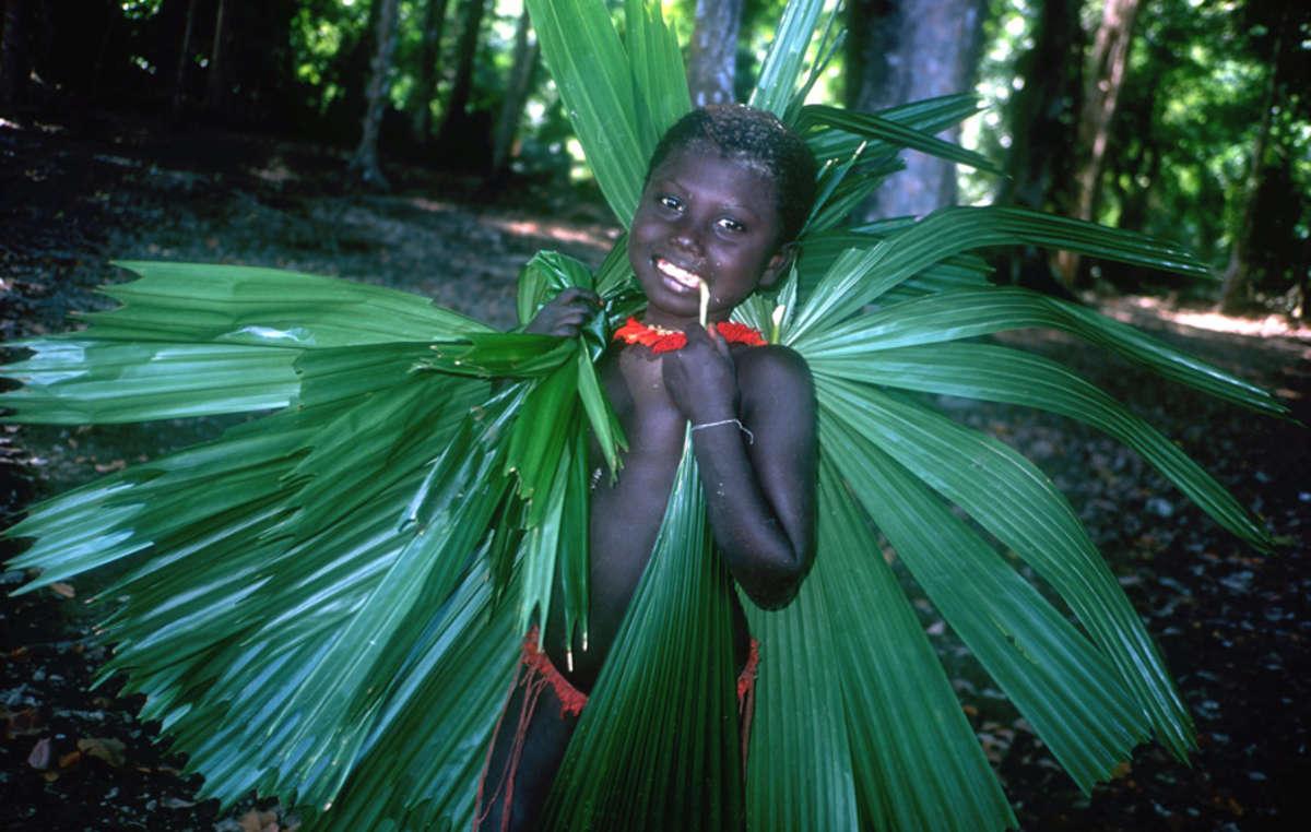 Gli Jarawa coprono i loro rifugi intrecciando foglie della foresta.