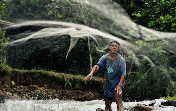 'Land ist unser Leben und unser Blut. Ohne den Wald können wir nicht überleben.' Die Wälder der Penan wurden von Holzfällern zerstört.