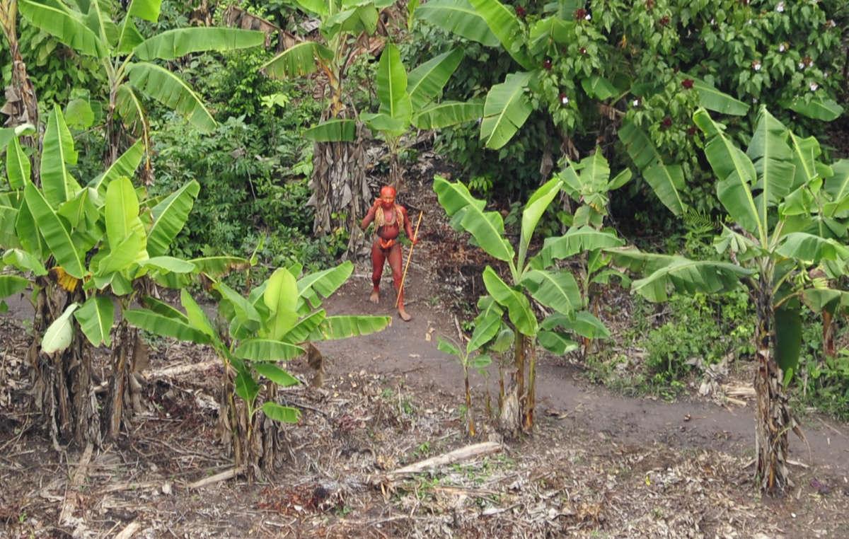 Índios isolados enfrentam pressões em suas terras devido à exploração ilegal madeireira, o tráfico de drogas e exploração de petróleo e gás (foto tirada em 2010).