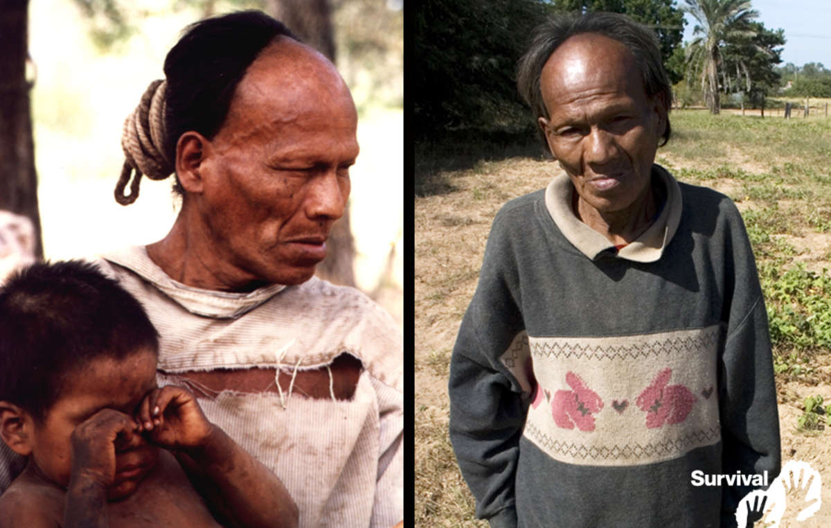 Parojnai Picanerai bei guter Gesundheit am Tag seines ersten Kontaktes 1998 (links) und schwer an Tuberkulose erkrankt 2007 (rechts). 2011 erlag er seiner Erkrankung.
