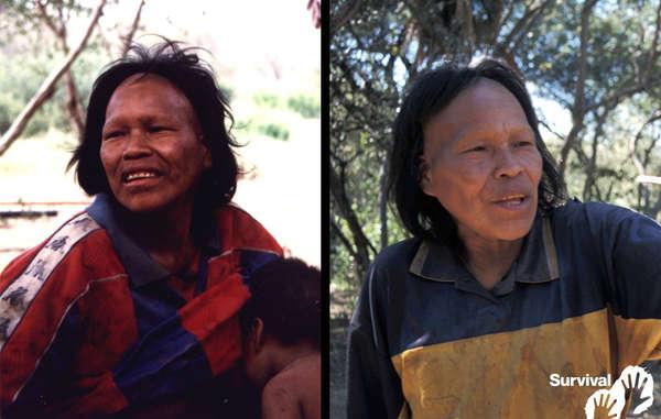 Ibore Picanerai en pleine santé le jour où elle a été chassée de la forêt en 1998 (à gauche), et atteinte de la tuberculose  en 2003 (à droite). Elle est morte en 2009.