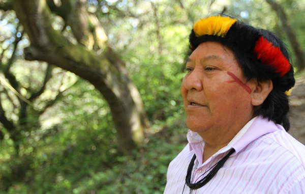 Davi Yanomami visited California's Muir Woods and other landmarks during his unique visit to the USA.