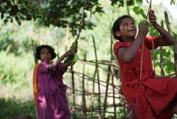Dongria Kondh children swing from a tree in Niyamgiri, Orissa