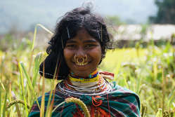 Dongria Kondh woman picking millet in Niyamgiri, India