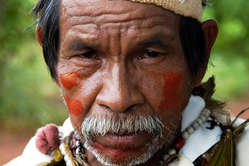Guarani man. Shell is using sugarcane planted on Guarani land.