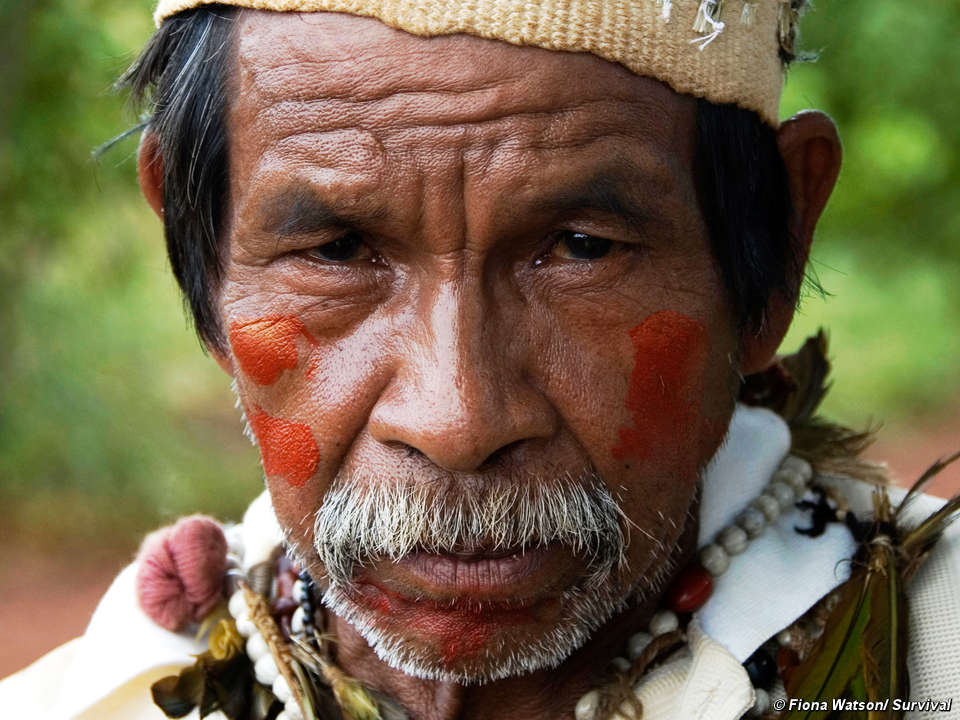 guarani indians Guarani indiansthe guarani indians are a branch of the tupi-guarani linguistic family of east-central south america a semi-sedentary people, they lived south of the amazon between the brazilian coast and the río paraná and río paraguay.