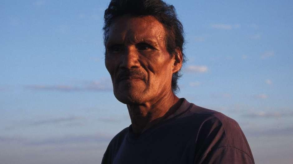 Pecuaristas brasileiros já têm destruído cerca de 3.000 hectares da terra da tribo.