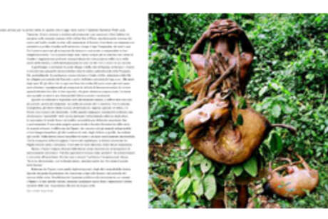 Pag52-siamotuttiuno-survival_460_landscape