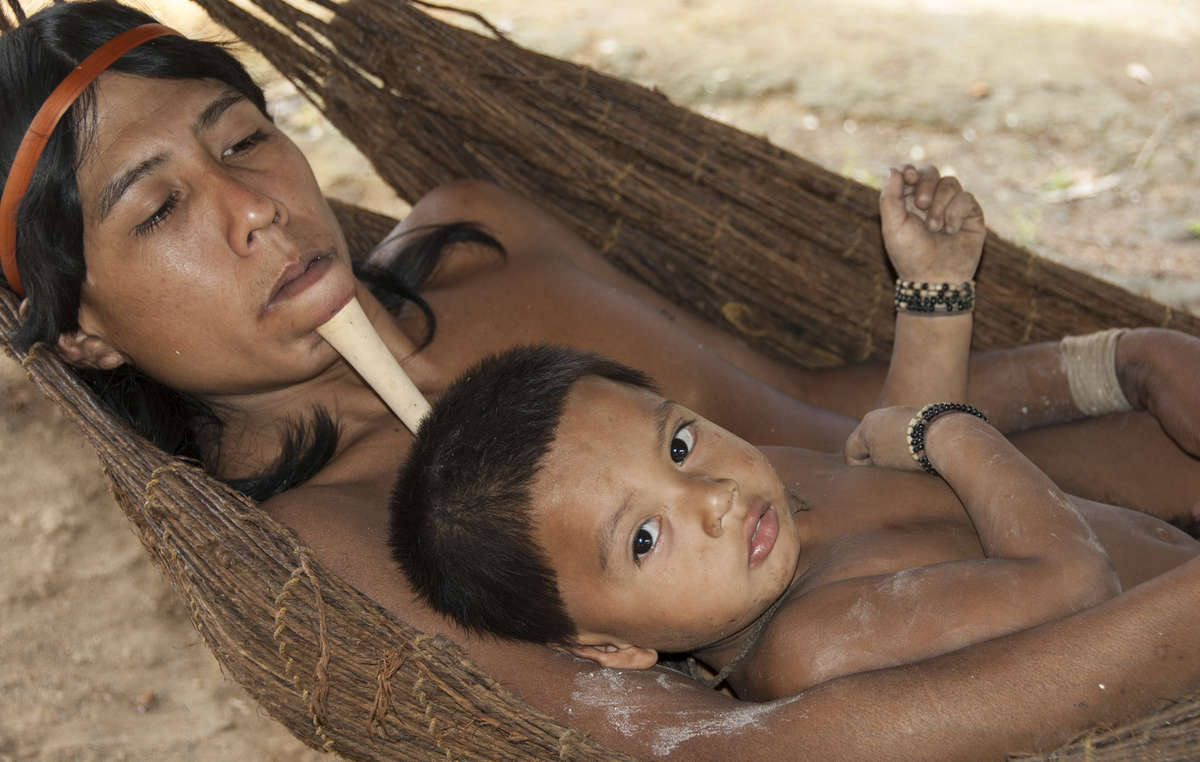 Zo'é man and child resting in a hammock crafted from Brazil nut fibres. Nowadays, any outsider visiting the Zo'é is thoroughly screened before they can enter the territory. As a result the population has stabilized and is gradually increasing. Today there are about 315 Zo'é.